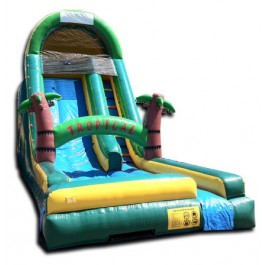 (B) 18ft Tropical Water Slide