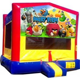 (C) Angry Birds Bounce House