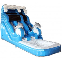 (B) 18ft Dolphin Dual Lane Water Slide