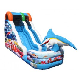 (B) 18ft Aquatic Playland Wet-Dry Slide