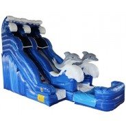 (B) 20ft Dolphin Dry Slide