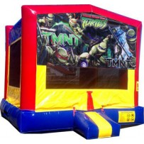 (C) Teenage Mutant Ninja Turtles (TMNT) Bounce House