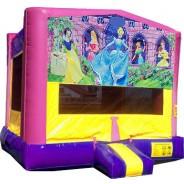 (C) Disney Princess Bounce House
