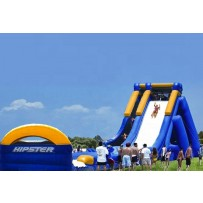 (D) 30ft Giant Hipster Water Slide