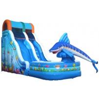 (B) 18ft Aquatic Playland Wet-Dry Slide